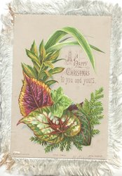 A HAPPY CHRISTMAS TO YOU AND YOURS surrounded by ornamental leaves