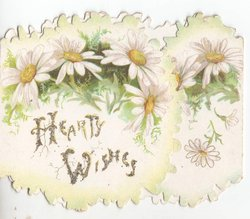 HEARTY WISHES glittered, daisies above