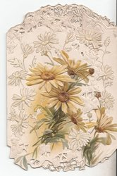 no front title, two flaps forming cover with various daisies