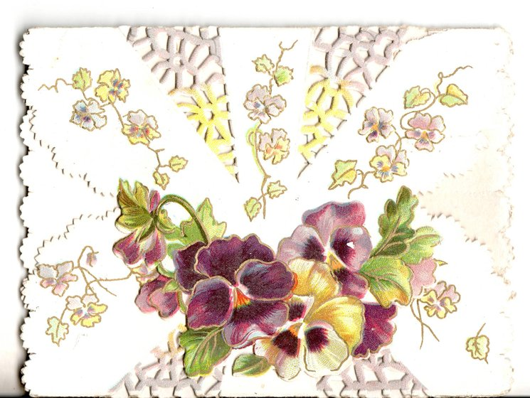 no front title, two flaps form cover, purple and yellow pansies on cover