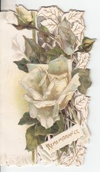 REMEMBRANCE in gilt, white roses and decorative leaves