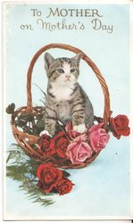 TO MOTHER ON MOTHER'S DAY in gilt above cat in basket of roses