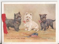 FOR AULD LANG SYNE / EVERY GOOD WISH three dogs wearing bows