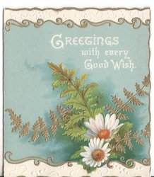 GREETINGS WITH EVERY GOOD WISH two white daisies