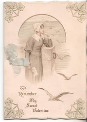 TO REMEMBER MY SWEET VALENTINE woman looks out at sea, many seagulls in flight