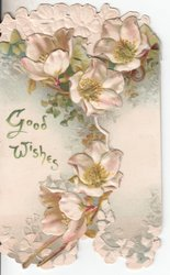 GOOD WISHES in green, pink dog roses