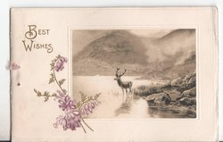 BEST WISHES in gilt, inset of deer in water, purple flowers to left