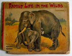 FAMILY LIFE IN THE WILDS