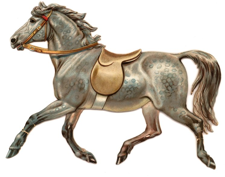 grey horse in a running pose with empty saddle