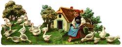 THE POULTRY FARM