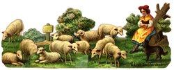 A LITTLE SHEPHERDESS