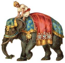 INDIAN ON ELEPHANT