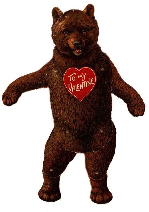 brown bear, Valentine to chest