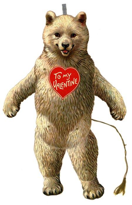 polar bear, Valentine to chest
