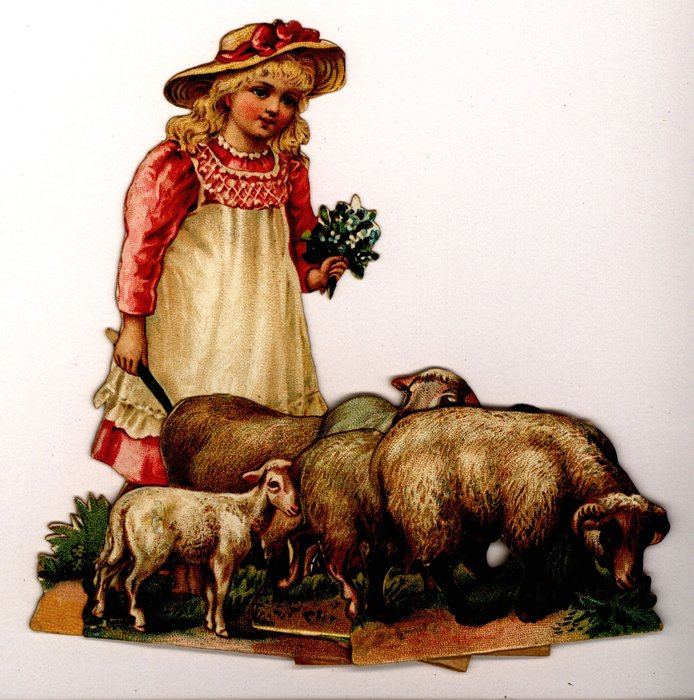 young girl in a pink dress herds sheep