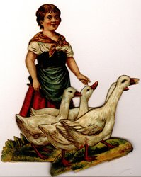 young girl herds geese