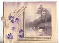 GREETINGS in gilt, inset of swans in water to right, violets to left