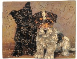 THE AGE OF INNOCENCE, two terrier type dogs sit and face forward
