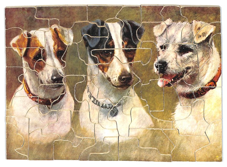 FIFFI, FRED N TERRY, three terrier type dog portraits