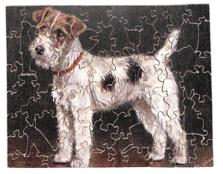 JACK THE BOY, Terrier dog