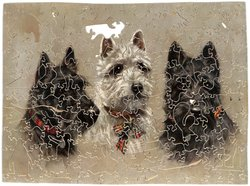 BRITHER SCOTS, three scotch terrier dogs, all wear plaid collars
