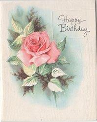 HAPPY BIRTHDAY single rose to left