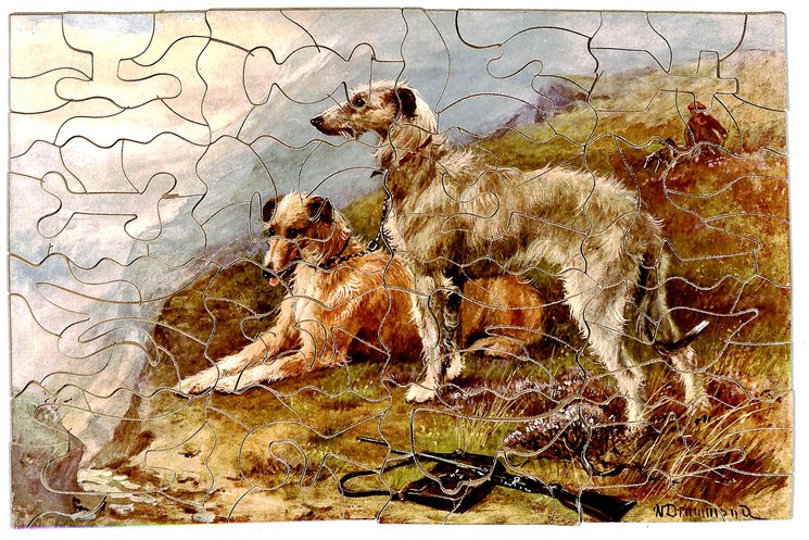IN THE HIGHLANDS, two large hunting dogs, one lays and one stands, gun and pouch in foreground, hunter in background,