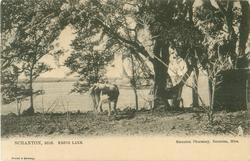KREBS LAKE