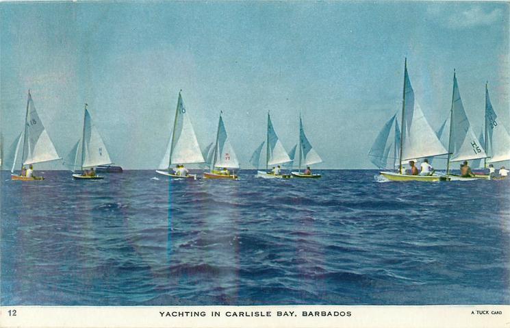 YACHTING IN CARLISLE BAY