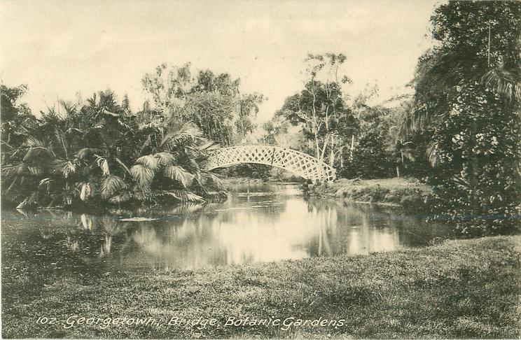 BRIDGE, BOTANIC GARDENS