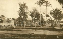 EUROPEAN QUARTERS, DEMERARA BAUXITE CO.