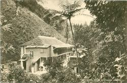 THE THERMAL BATHS, ST. THOMAS