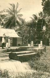 A WATER WHEEL, MARTHA BRAE RIVER, TRELAWNY