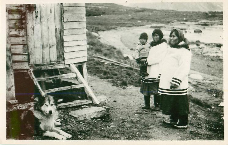 A LABRADOR FAMILY  same image as ESKIMO FAMILY below