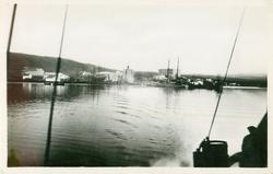 ST. ANTHONY FROM STEAMER