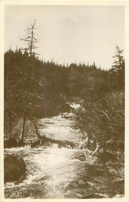 ST. ANTHONY BROOK, A PICTURESQUE SCENE IN NORTHERN NEWFOUNDLAND