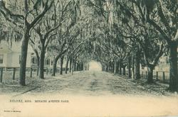 BENACHI AVENUE OAKS