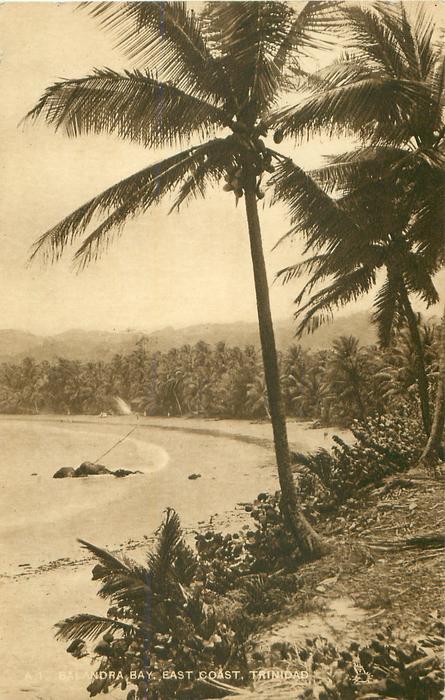 BALANDRA BAY, EAST COAST, TRINIDAD