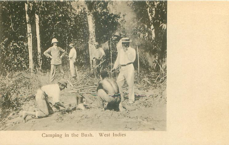 CAMPING IN THE BUSH, WEST INDIES