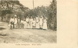 COOLIE IMMIGRANTS, WEST INDIES