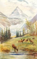 MOUNT ASSINIBOINE AND GLACIER