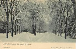 THE WALKS IN THE WINTER