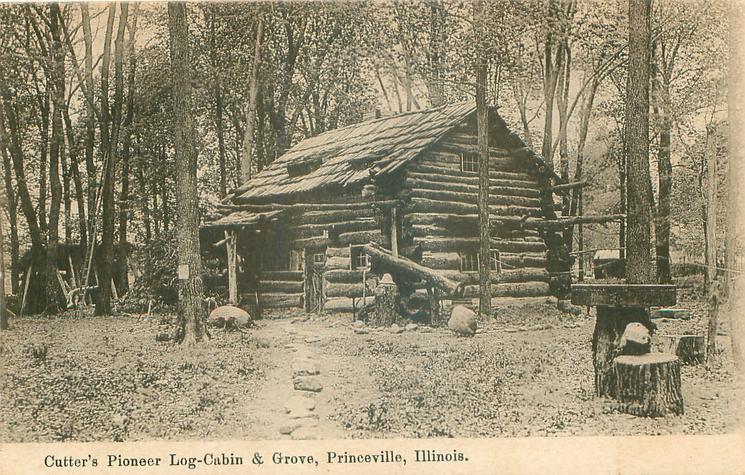 CUTTER'S PIONEER LOG-CABIN & GROVE
