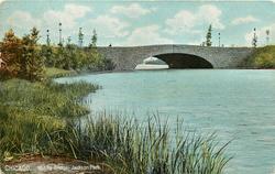 MIDDLE BRIDGE - JACKSON PARK