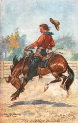 THE BUCKING BRONCHO