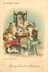 KITTY'S TEA PARTY