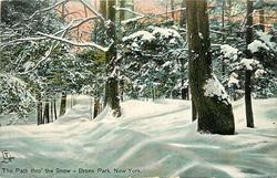 THE PATH THRO' THE SNOW