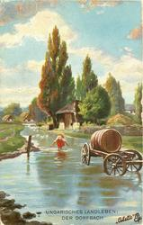 UNGARISCHES LANDLEBEN: DER DORFBACH  water cart standing in water, woman behind, distant trees and cottages