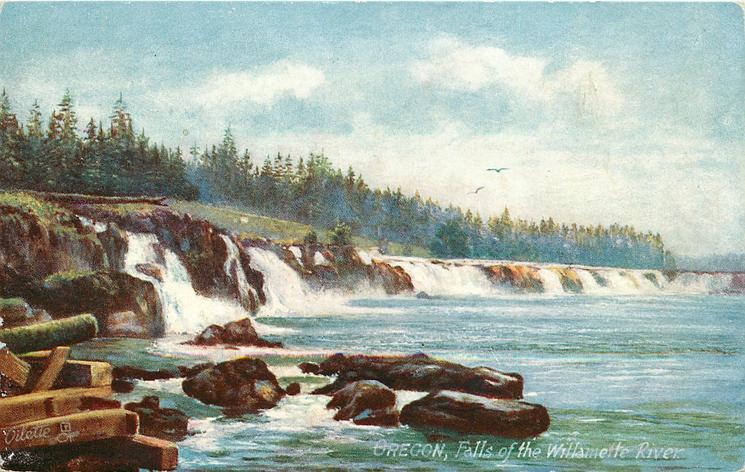 FALLS OF THE WILLAMETTE RIVER