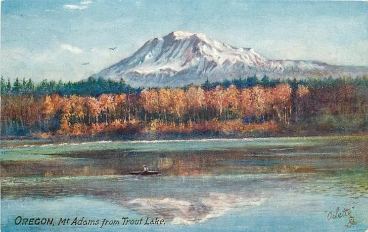 MT. ADAMS FROM TROUT LAKE